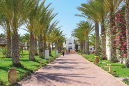 Club Palm Azur Djerba Prijs