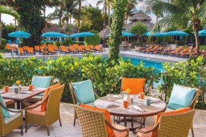 The Palms Hotel & Spa - TUI Last Minutes