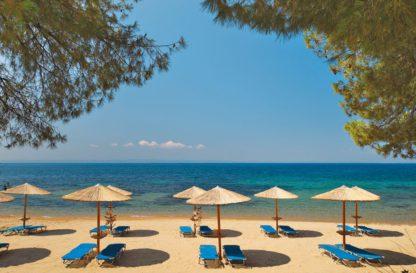 Blue Dolphin in Griekenland