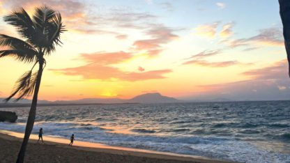 Casa Marina Reef - TUI Last Minutes