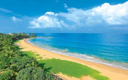 Pandanus Beach Resort & Spa Vliegvakantie Boeken