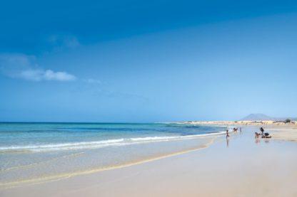 Suite Hotel Atlantis Fuerteventura Resort Vliegvakantie Boeken