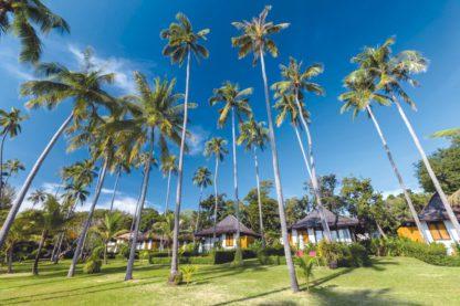 The Vijitt Resort Phuket - TUI Last Minutes